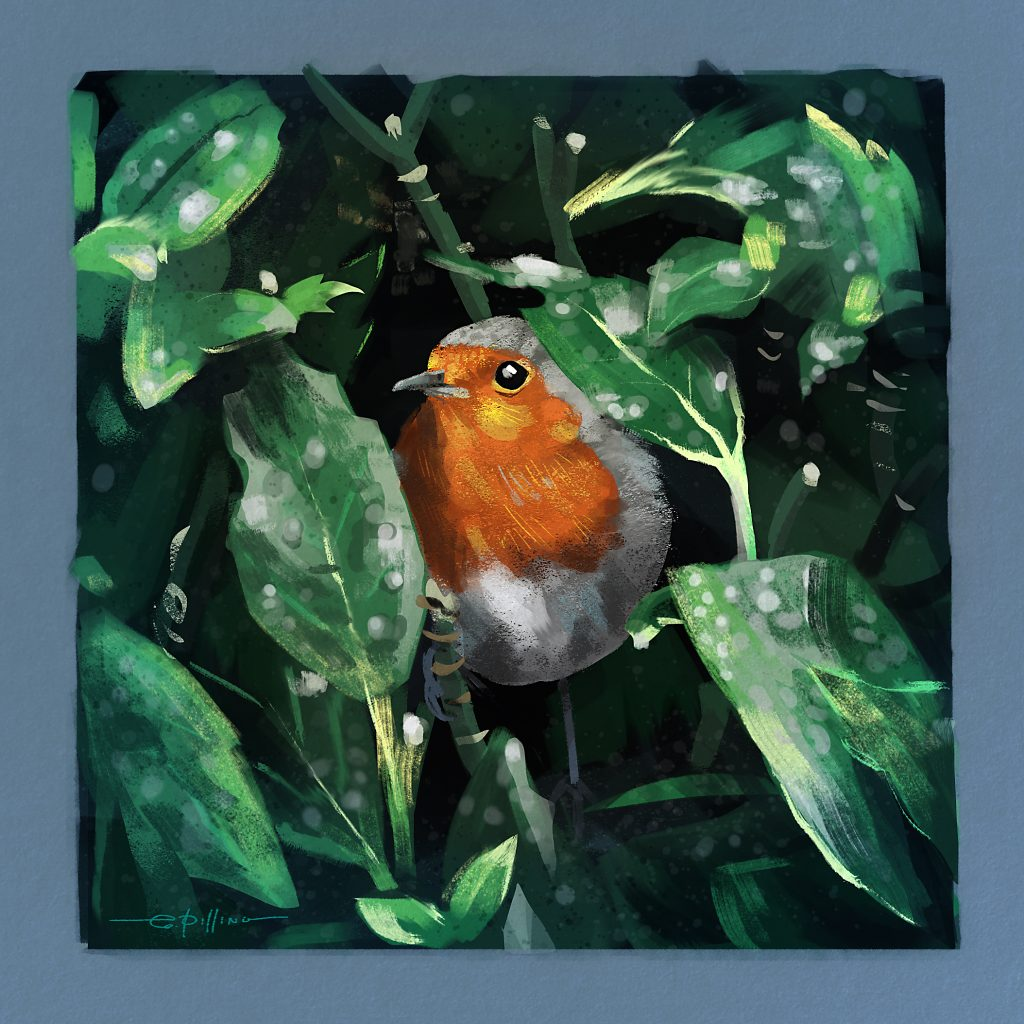 Digital painting of Robin by Graham Pilling